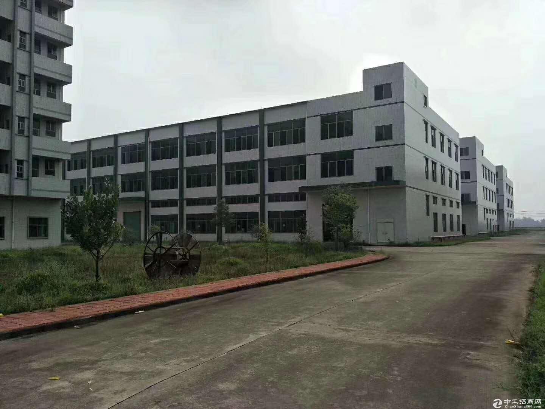 珠海金湾 机场高速旁 全新厂房出租 门口6车道 近机场、码头