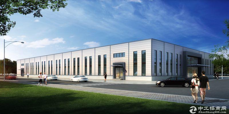 专属定制 标准厂房 大型轻钢结构厂房