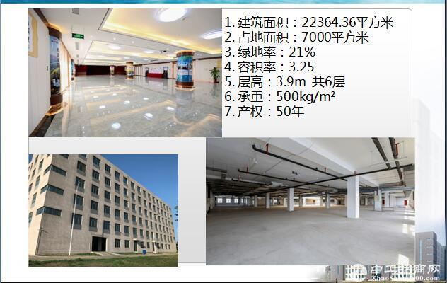 塘沽滨海新区办公、保税仓库出租-图2