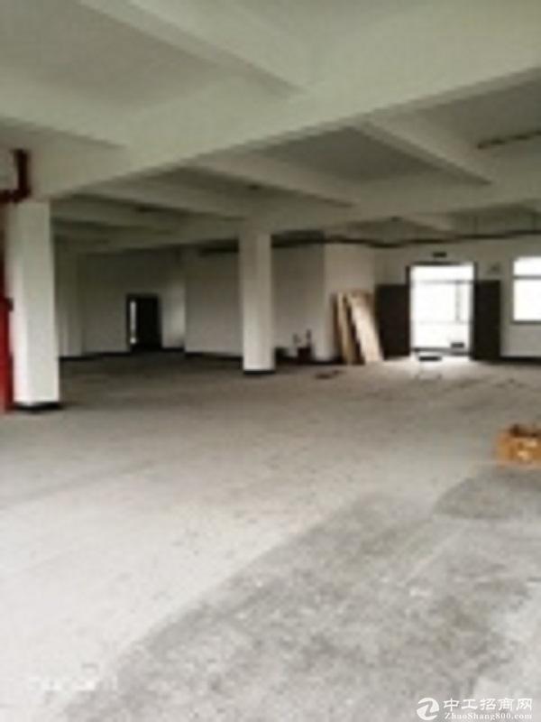 2000平方米标准厂房出租. 3亩露天水泥库场可租可售.