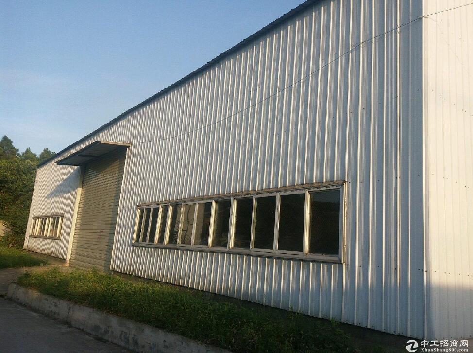 高淳开发区3000平厂房 可租可售图片2