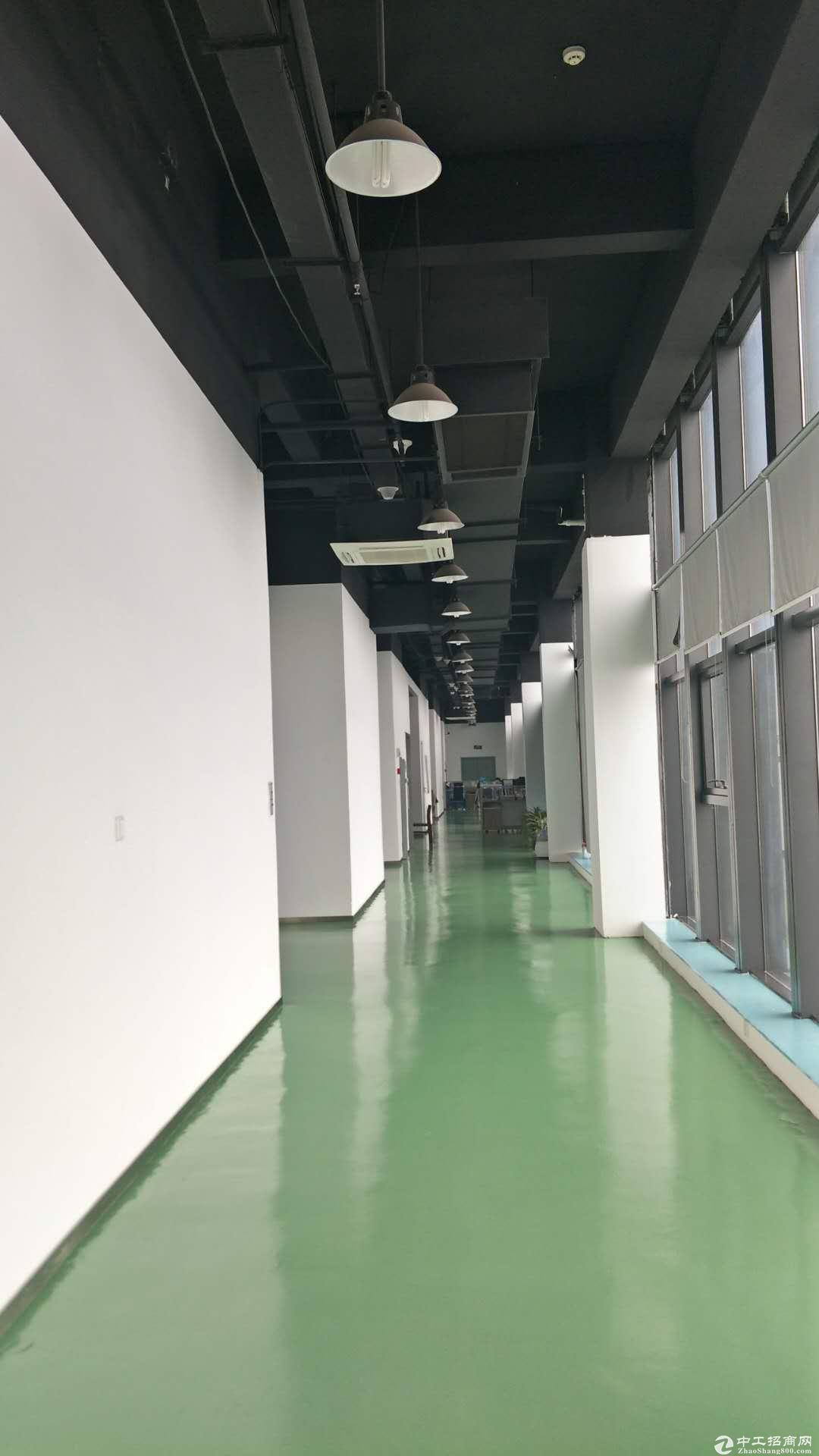 南京江宁科学园厂房出租