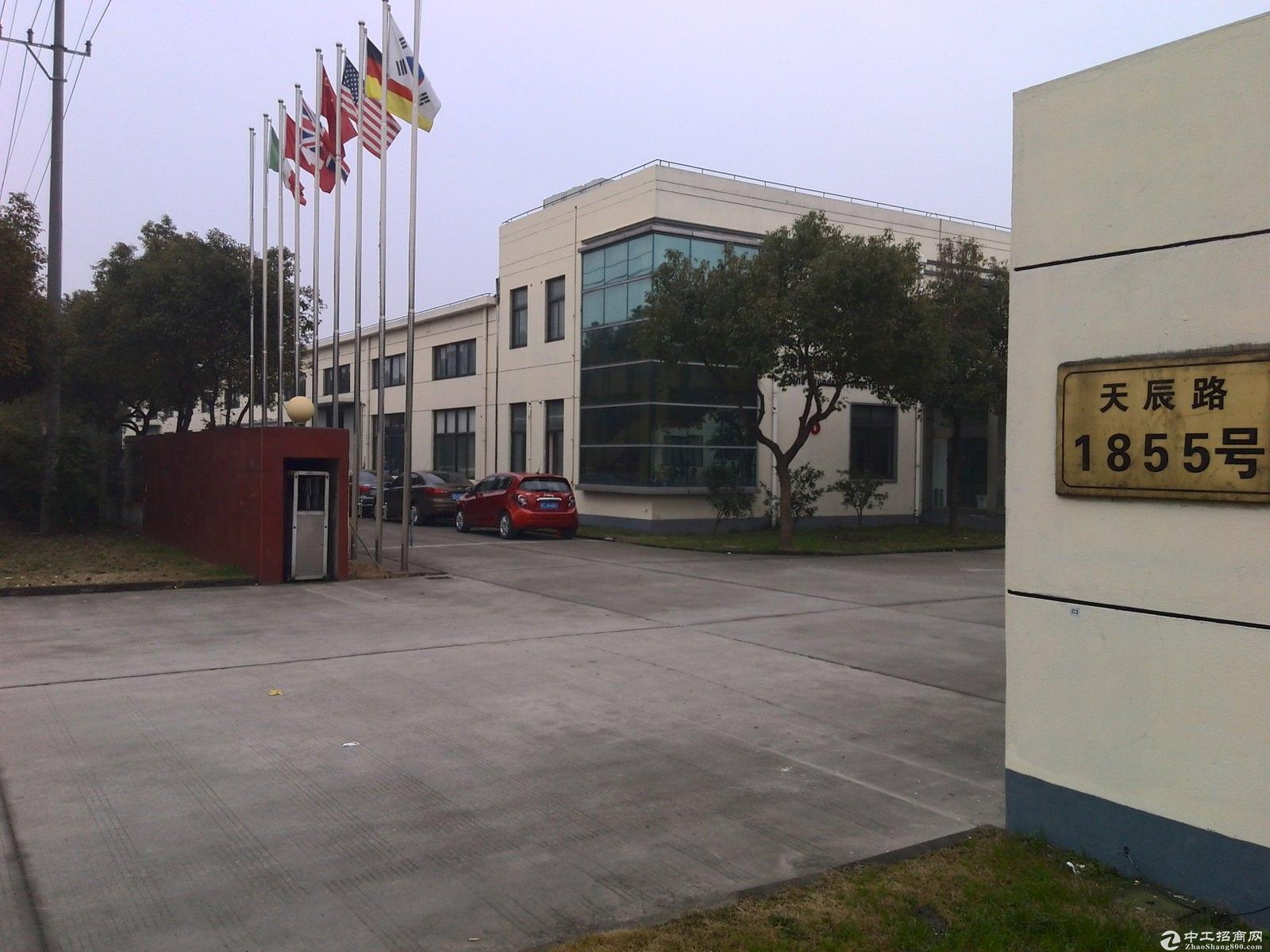金山独门独院占地253亩三本产证建筑15万方厂房-图2