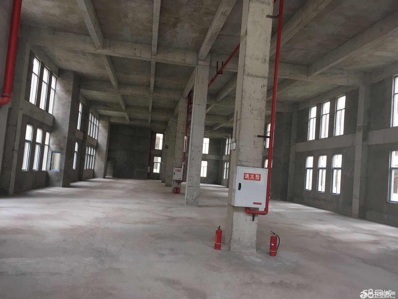 现房两层独栋标准厂房1650平 通轻轨送配电