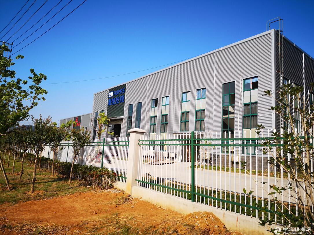 新市镇单层钢结构厂房出租,层高12米,带10吨行车!