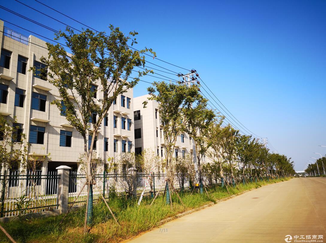 博望镇镇东工业园,标准厂房出租,层高9米