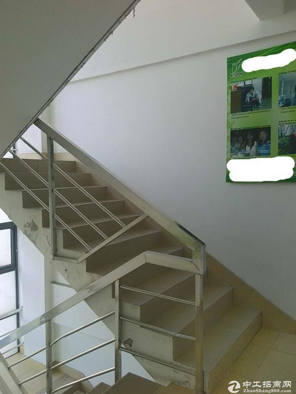 宝山园区独栋四层绿证可生产加工型工业厂房诚售