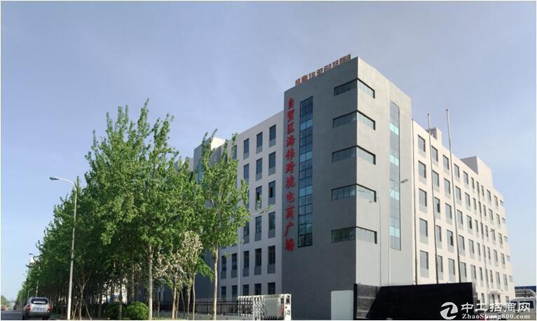 天津塘沽自贸区办公、保税仓库优质地产项目出租