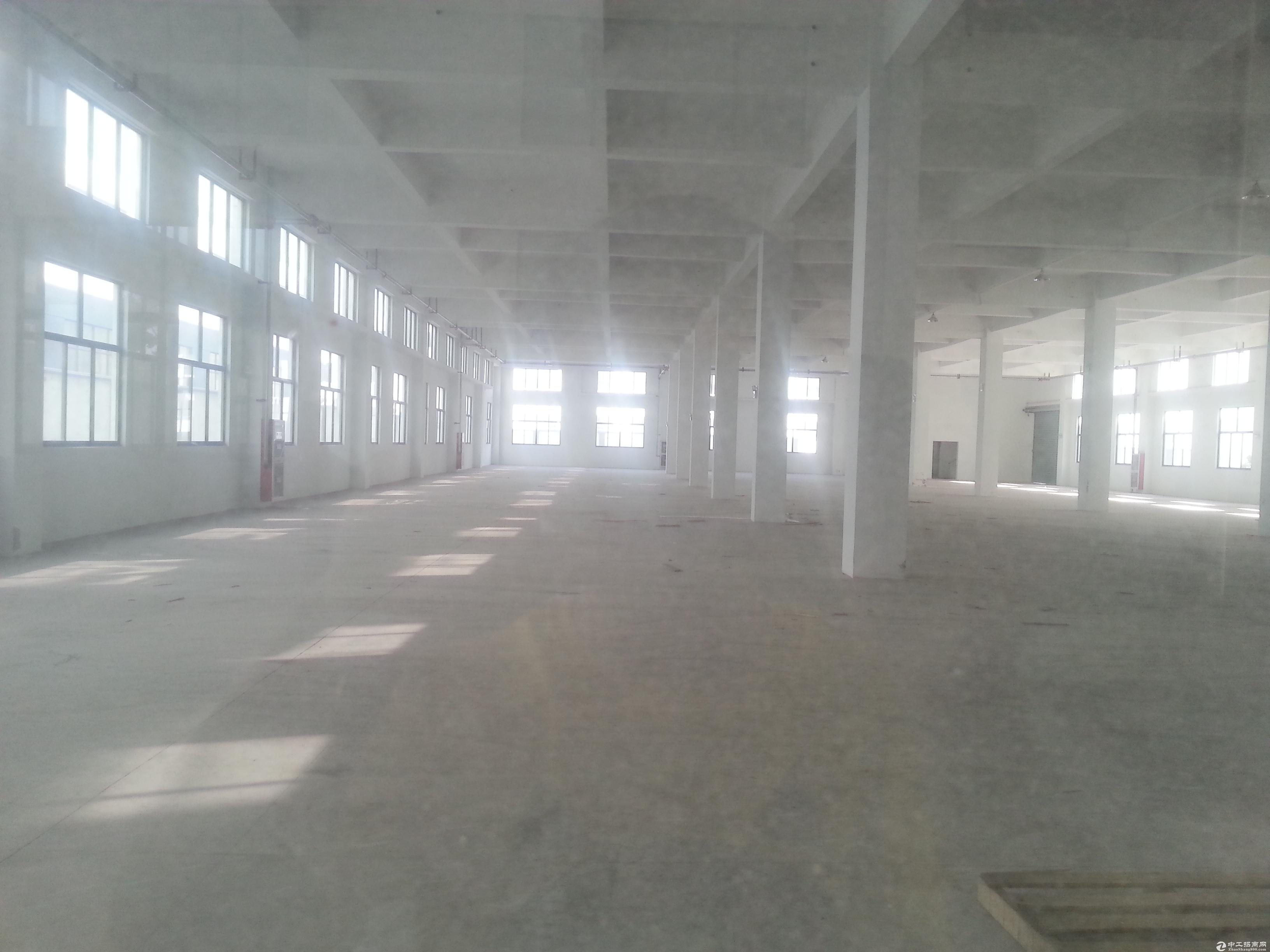 堰桥工业园1600平单层厂房,价格便宜