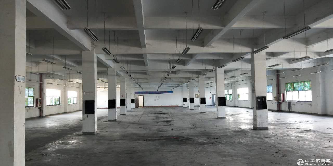 嘉定华博路500号适合物流,淘宝电商,服装生产、仓储等