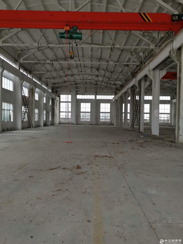 单层厂房19000平,每跨都有行车,可分租