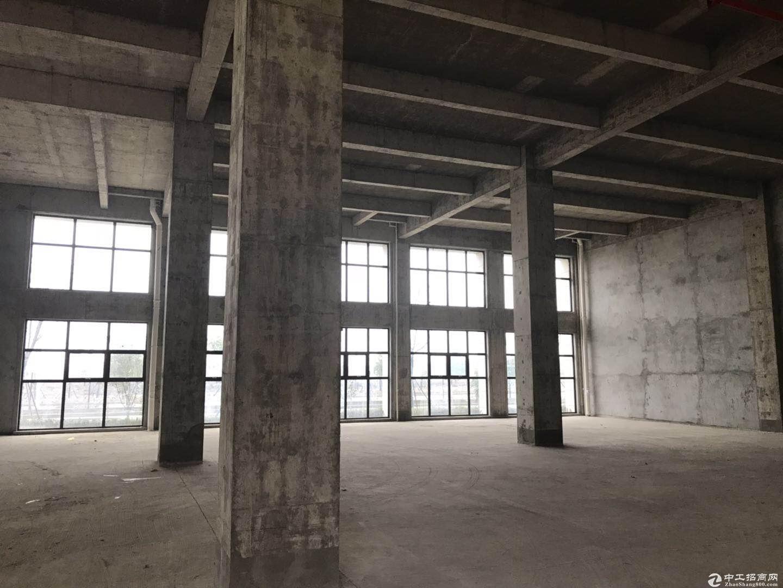 出售溧水新建厂房 交通极好 配套齐全 产品多样图片2