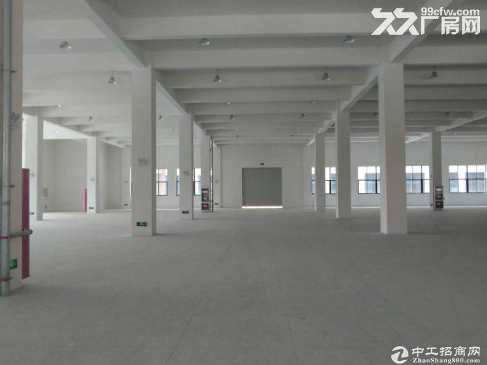 出售 高速出入口高品质框架厂房600-5000平米