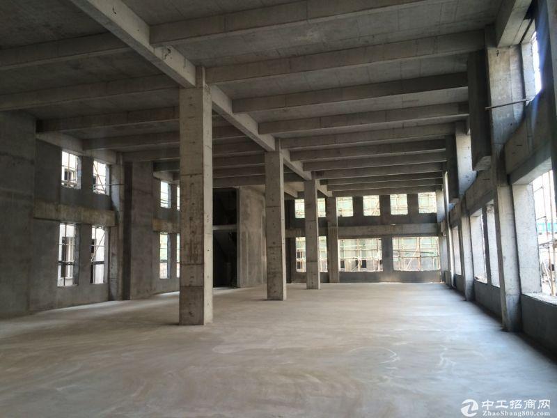 高新区766㎡大平层厂房出售,全框架6米挑高,证件齐全-图2