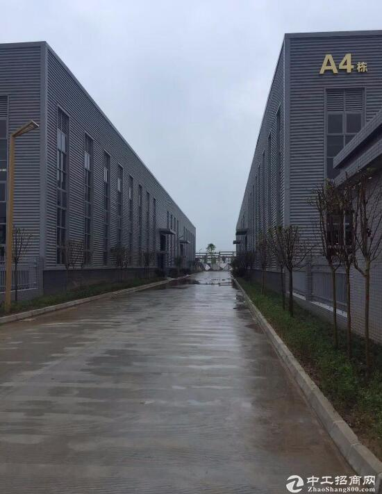 红安西站5公里附近,红本厂房单层出售6000平!