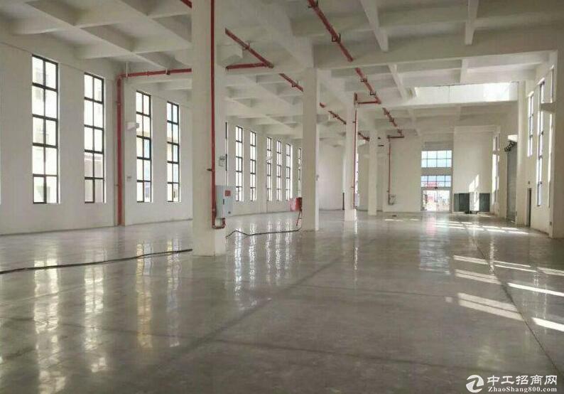九龙坡标准园区厂房出售 面积一千到五千