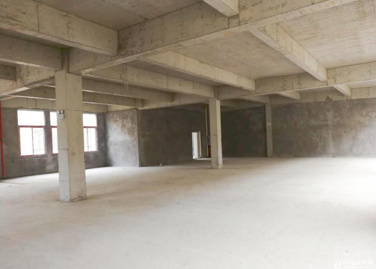 出售独栋厂房 单层11米挑高 高速出口 送庭院