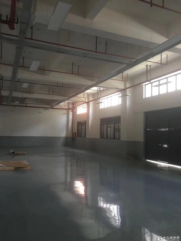 车墩一房东独立层面精装修1250平米厂房出租