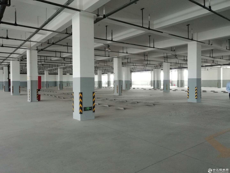 急租临港26000平方坡道厂房适合物流仓储车辆停放-图3