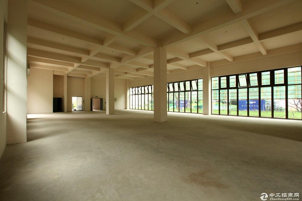 8.1米层高、8米超宽柱距;3、人货分流首层双入口设计图片4