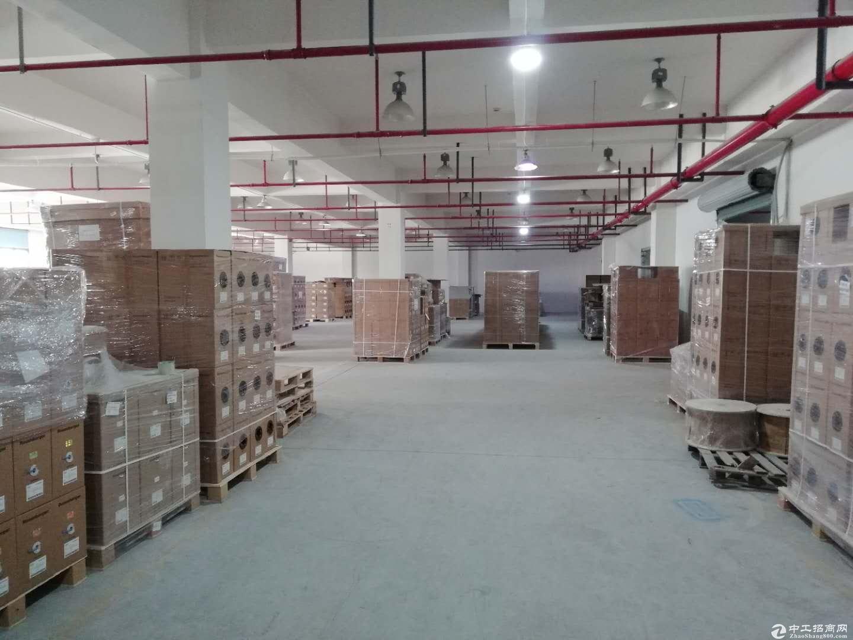 张江东高科技园区440平1.2元底楼出租104板块