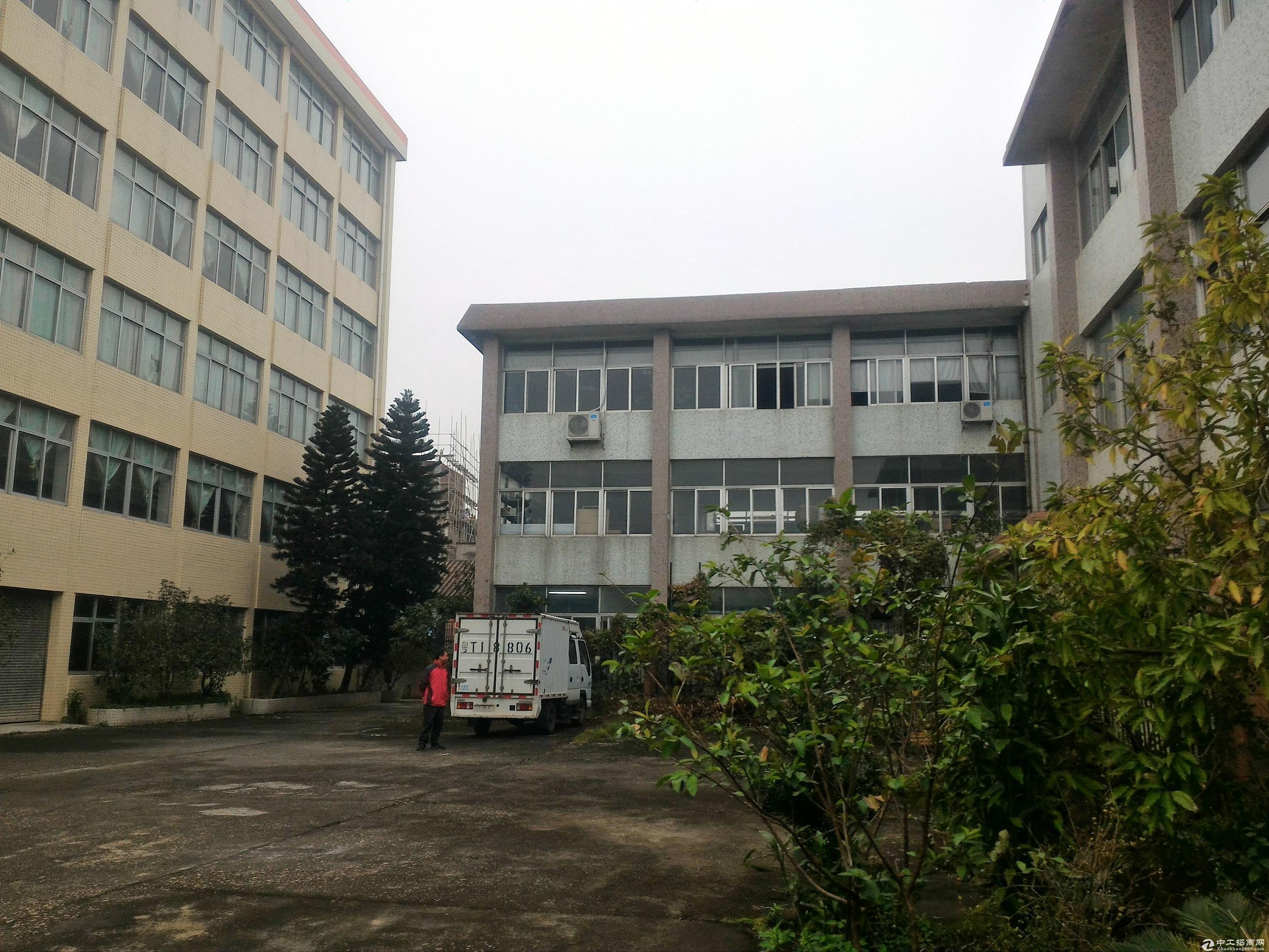 急出租港口镇茂生路楼高6层(房东出租)