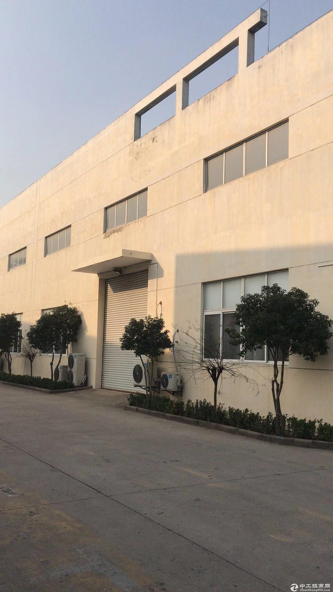 江宁自有独门独院单层厂房招租图片1