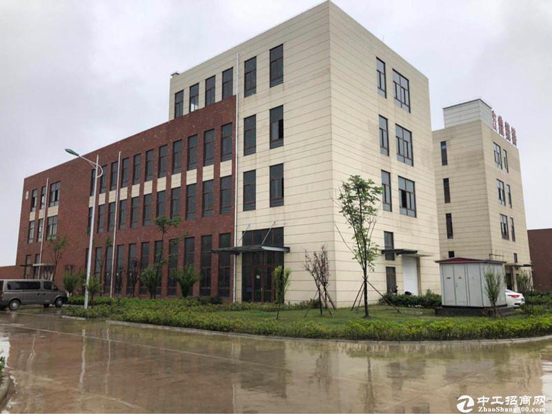 百强企业中南高科打造双凤标准化厂房  8.1米层高