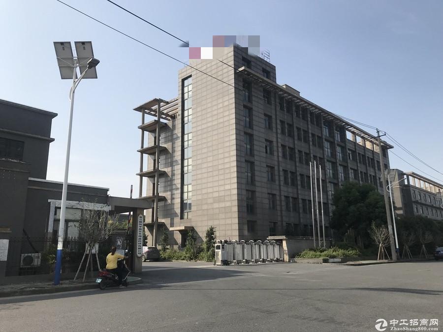 阜沙镇30亩工业地带厂房出售