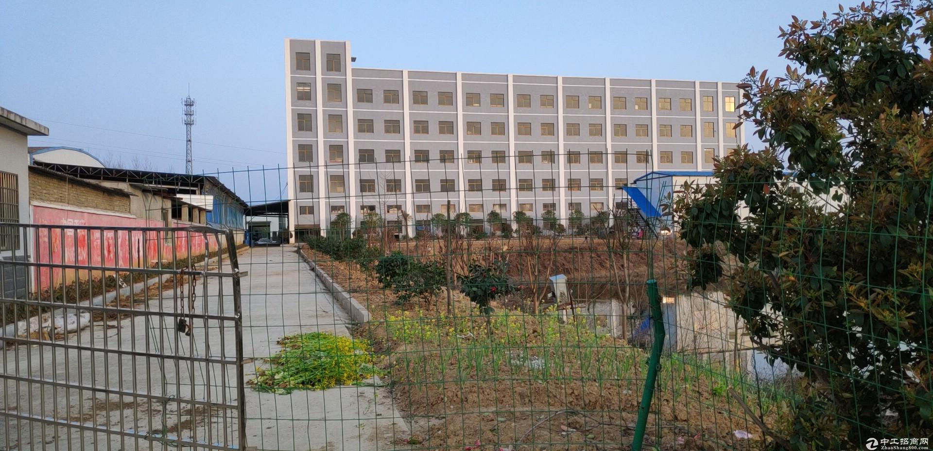 1万3千平米厂房出租-图2