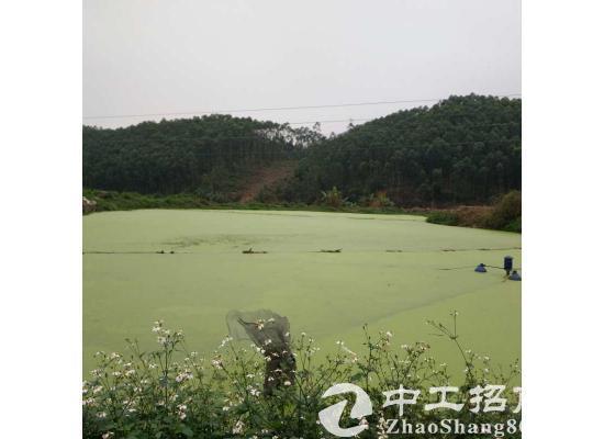 【出租】广东省佛山市高明区约7亩...