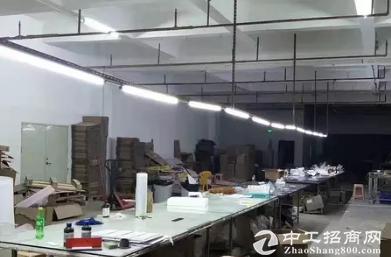 茶山镇原房东出租500平方
