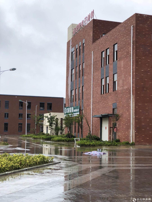 出售厂房层高8.1米,50年产权可按揭,分期