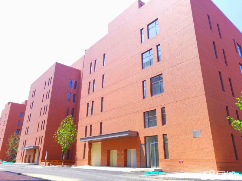 开发区高新区厂房出租出售大产权,可贷款,可环评