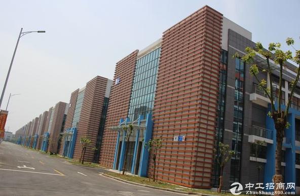 九华路标准化厂房仓库出租 1580平超大面积-图3