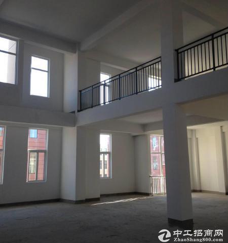 (出售)超高准现房独栋分层厂房出售-图4