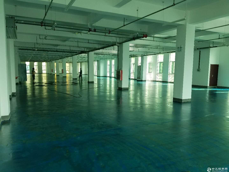 国营开发区双创科技园区孵化器办公楼厂房优惠分割转让