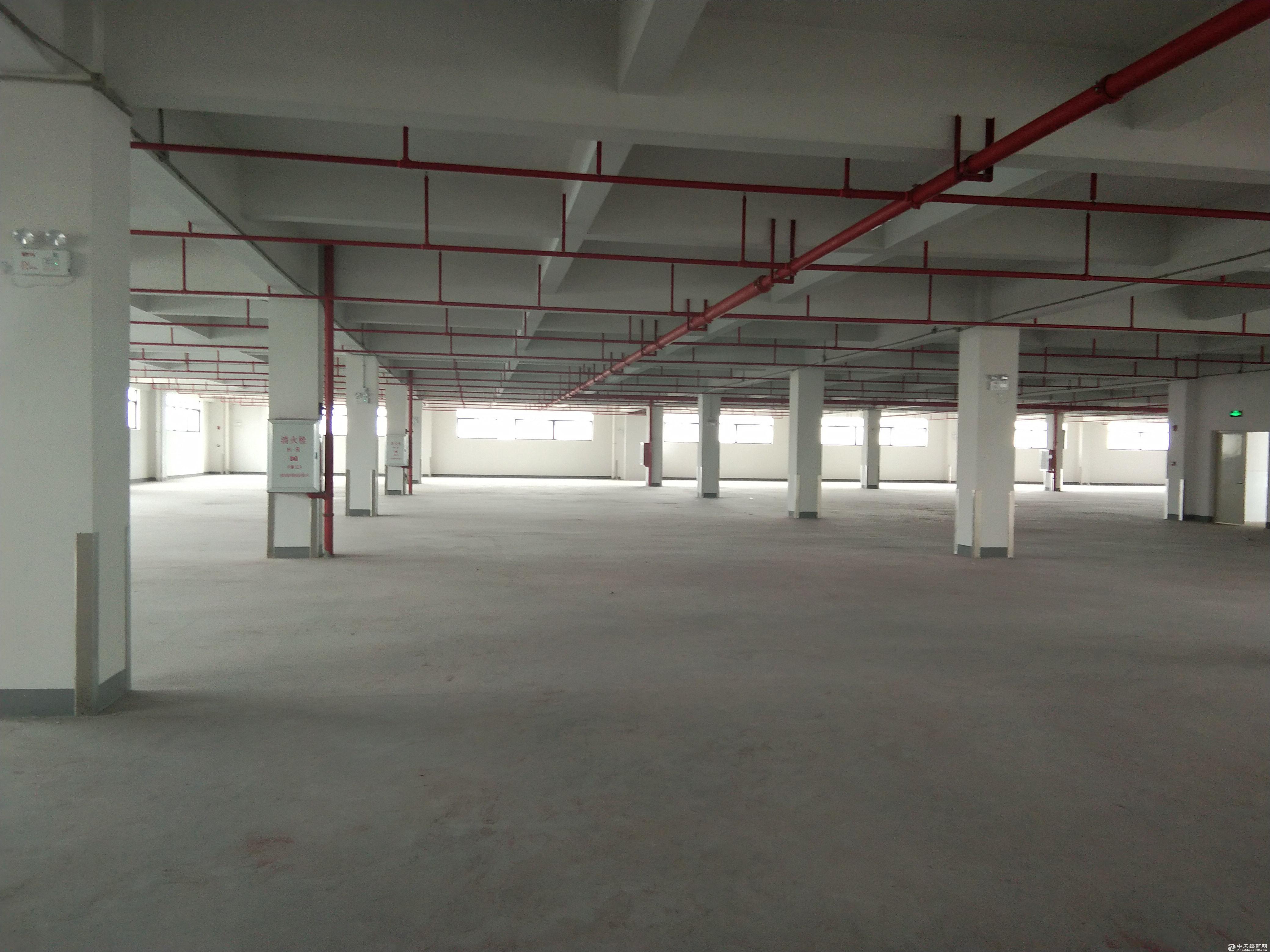 中山市东凤镇豪华厂房35000方1-4楼出租