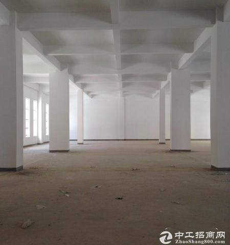 50年产权巨制4200平独栋厂房