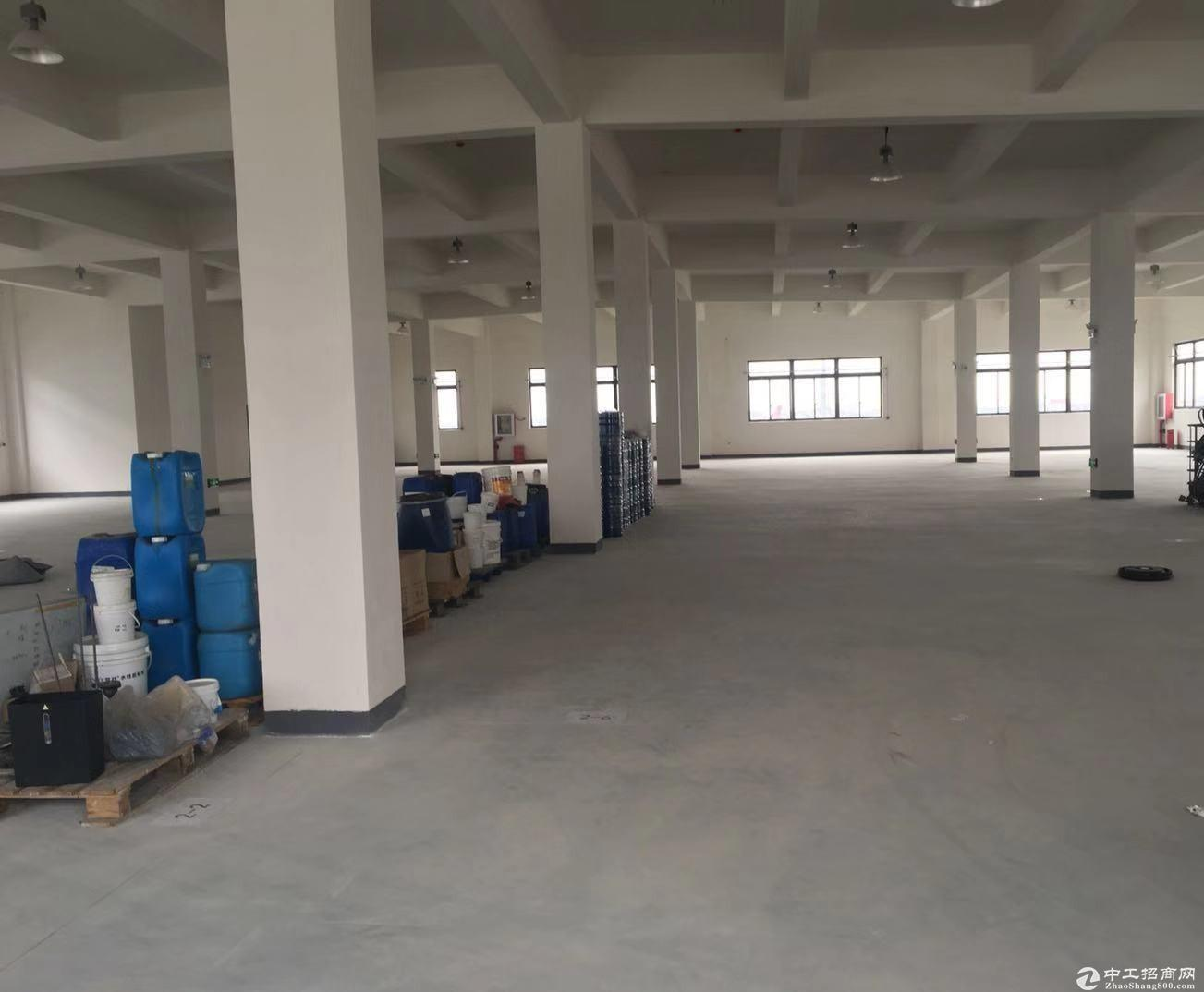老港镇同发路一楼厂房1316平租金只要0.9元-图4