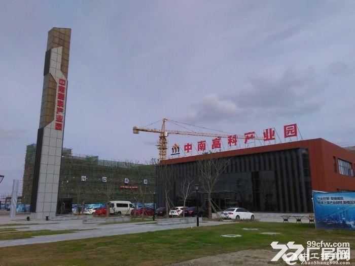新会台山50年产权独立厂房