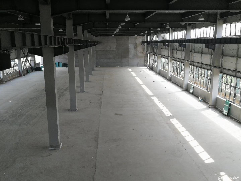 标准化厂房,50年大产权,12米超高层高,可分期
