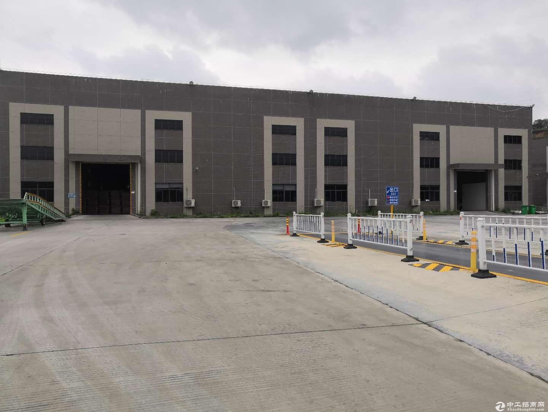 翠山湖科技园已建1万7钢结构厂房出售