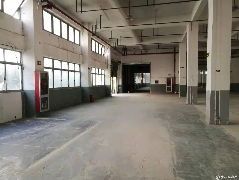 曹路104可环评绿证14500平办公厂房仓库大小可分租