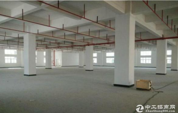 东莞出租茶山博头工业区一楼标准厂房900平米