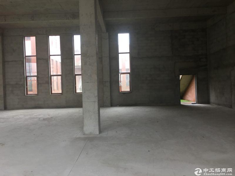 可做环评 信息长期有效 超高层8.1米厂房出售独立产权