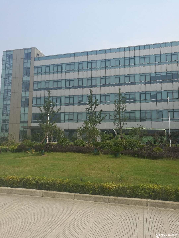 张江南区200平米起分割研发实验室出租