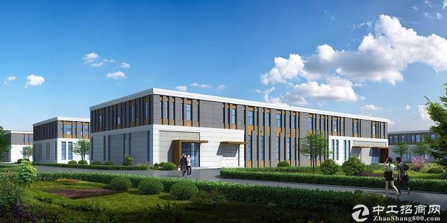中南高科标准厂房出租8.1米层高独栋花园式办公图片5