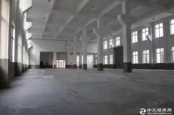 中南高科标准厂房出租8.1米层高独栋花园式办公图片8