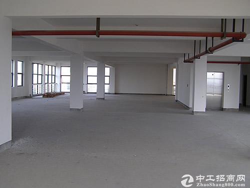 中南高科标准厂房出租8.1米层高独栋花园式办公图片6